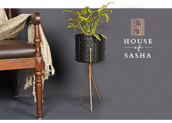House of Sasha